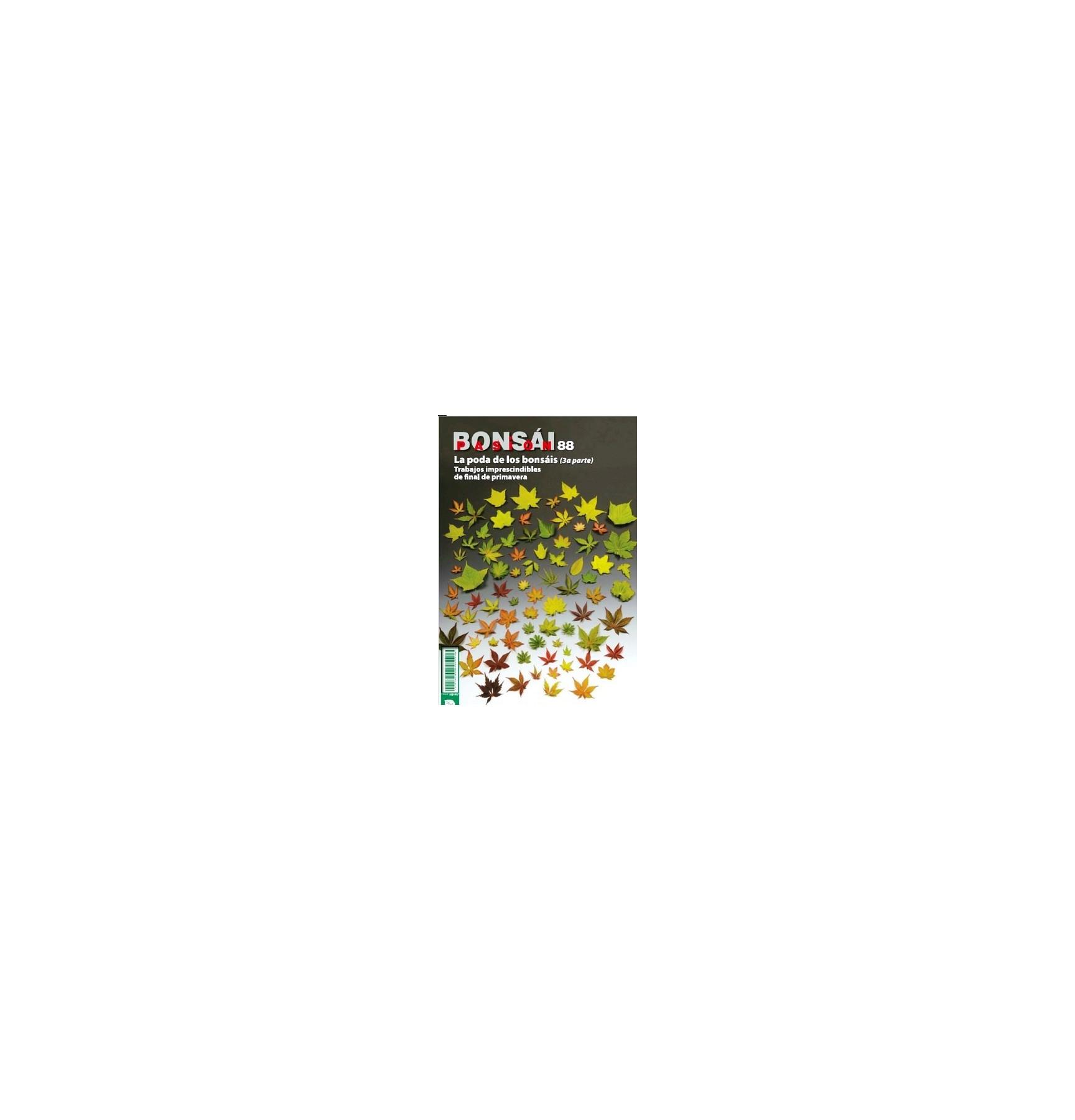 BONSAI PASION Nº88