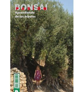 BONSAI PASION 86