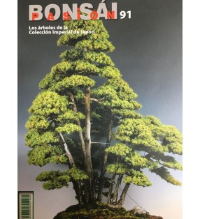 BONSAI PASION 91