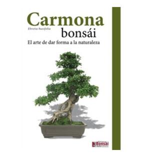 GUIA CARMONA